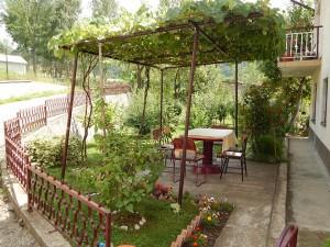 Bašta - Garden